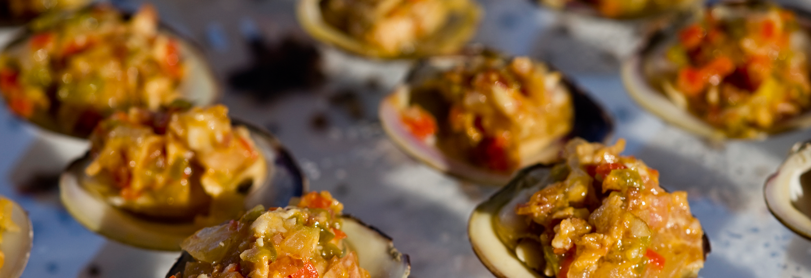 hp-slider-1600×550-clams-nt